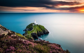 lighthouse, UK, sea, flowers, landscape, Wales