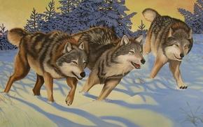 furry, wolf, animals