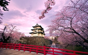 Japan, temple, cherry trees