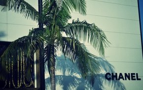 logo, Chanel, palm trees