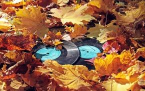 vinyl, fall, leaves