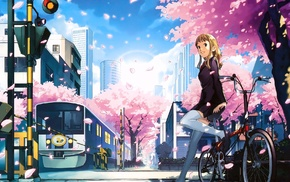 original characters, cherry blossom, anime girls, thigh, highs, anime