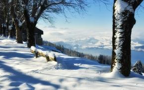 snow, winter, nature
