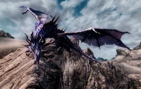 fantasy art, dragon, The Elder Scrolls V Skyrim