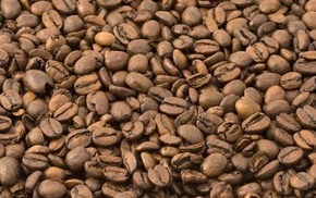 brown, closeup, coffee beans, coffee, nature