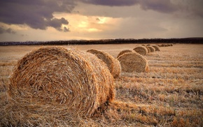 fall, straw, hay, farm, field, sunset