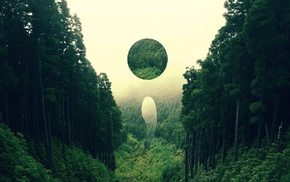 circle, forest, nature, digital art, abstract, landscape
