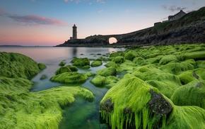sea, nature, lighthouse
