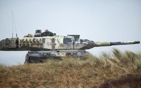 tank, Denmark, Leopard 2