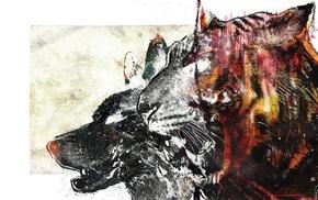 tiger, wolf, animals