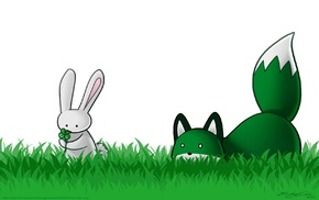 animals, grass, stupid fox, fox, holiday, Shamrock
