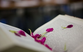 petals, books, depth of field, pages