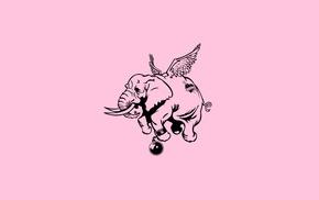 elephant, minimalism, love, humor