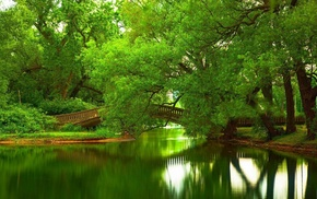bridge, trees, green
