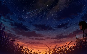 stars, sunset, grass, school uniform, anime, trees
