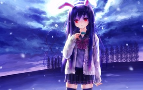 long hair, thigh, highs, red eyes, Reisen Udongein Inaba, animal ears