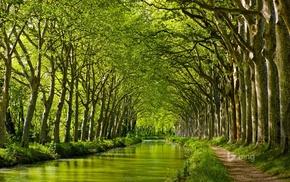 water, landscape, trees