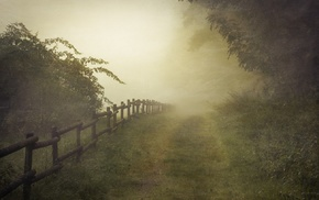 nature, landscape, path, mist, Germany, fence