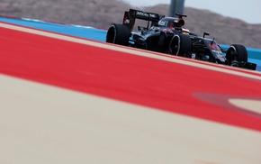 McLaren F1, Formula 1