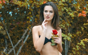 bikini top, portrait, 500px, rose, girl
