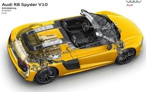 car, Audi, Audi R8, Audi R8 Spyder