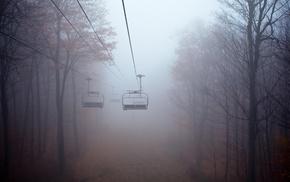 fall, mist, trees, ropes