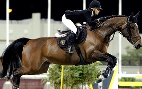horse, Equitation, horse riding, jumping