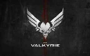 VirTual, virtual reality, PC gaming, EVE Online