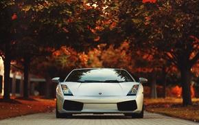 red, race cars, Lamborghini, Gallardo, road, trees