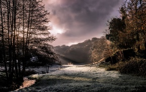 sun rays, creeks, nature, frost, landscape, trees