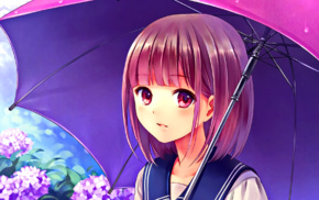 anime girls, anime, looking at viewer, pink eyes, umbrella, pink hair